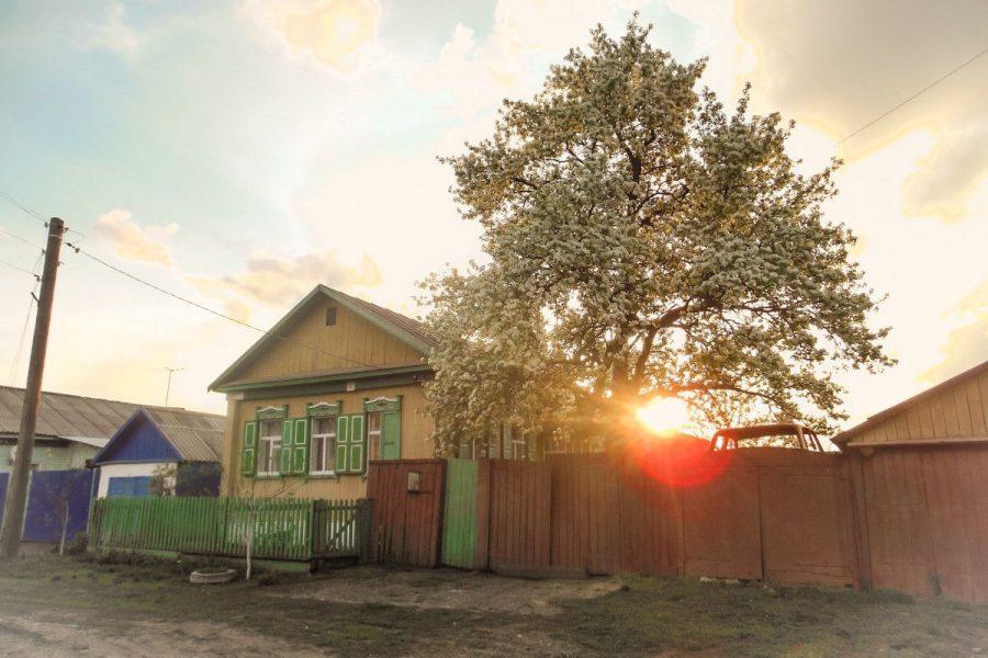 Diagnostic immobilier : un secteur dynamique